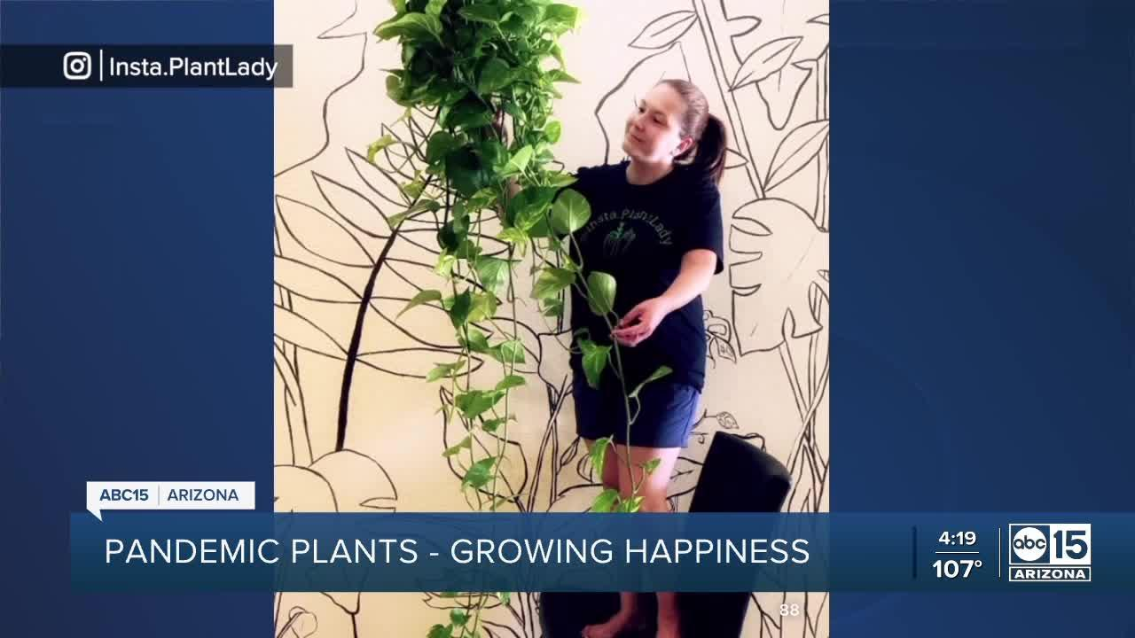 Valley woman's love for plants helping others find joy