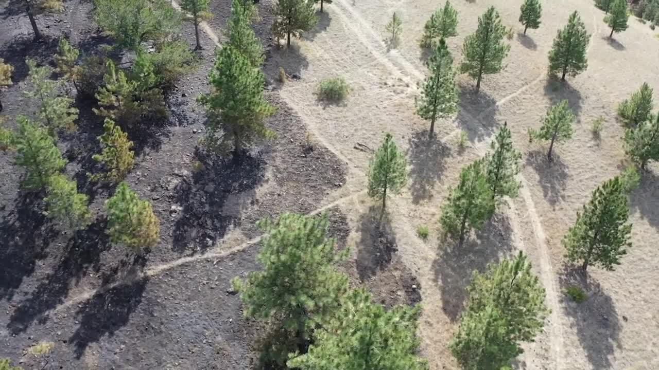Helena Fire praise mutual aid on Nob Hill Fire