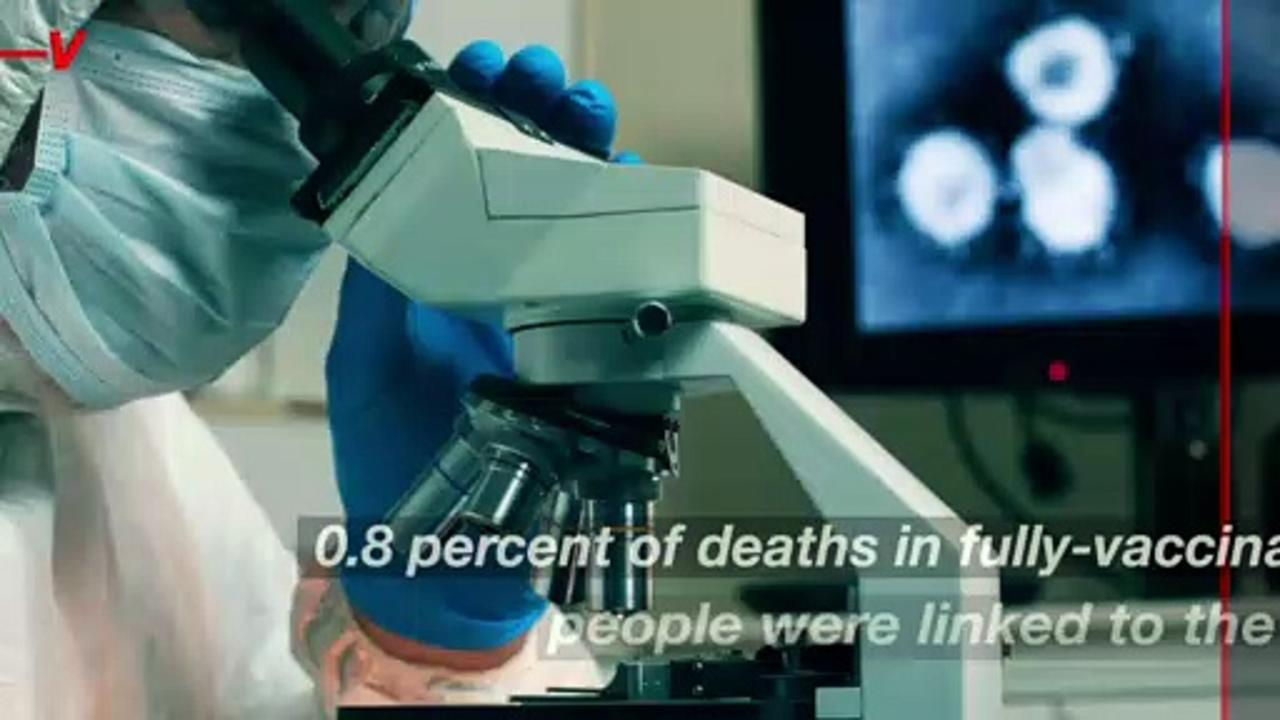 Getting Fully Vaccinated Greatly Reduces the Chance of Dying From COVID-19