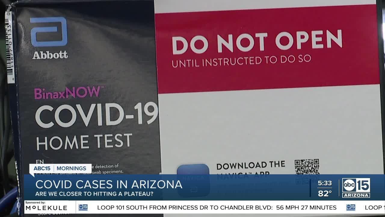 COVID-19 in Arizona: Are we closer to hitting a plateau?