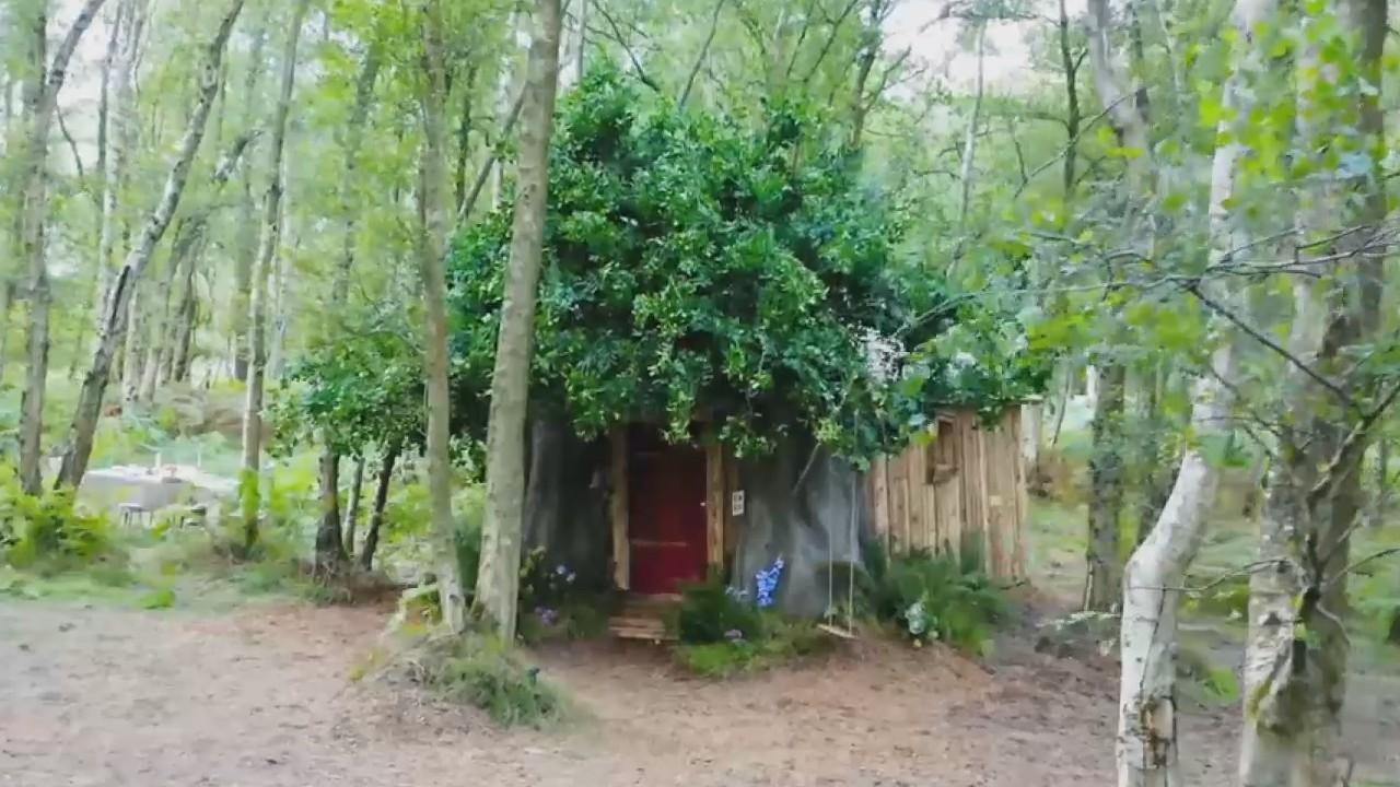 AirBnB brings Winnie the Pooh's house to life