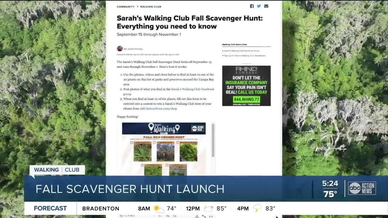 Sarah's Walking Club Fall Scavenger Hunt: Everything you need to know