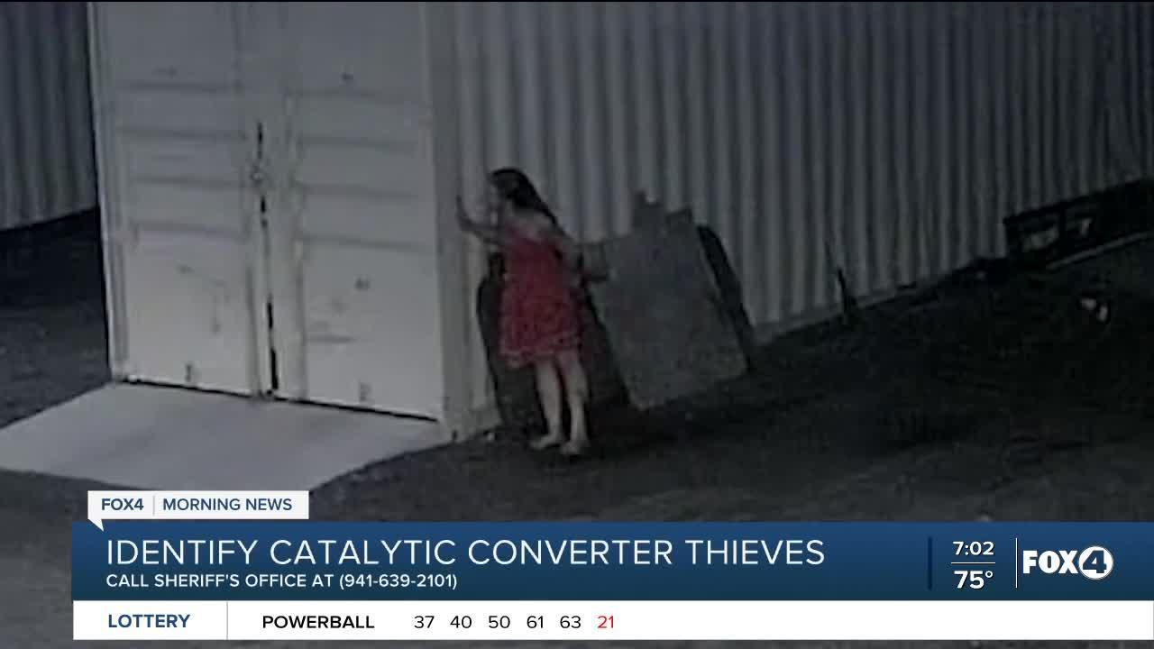 Catalytic Converter Thieves