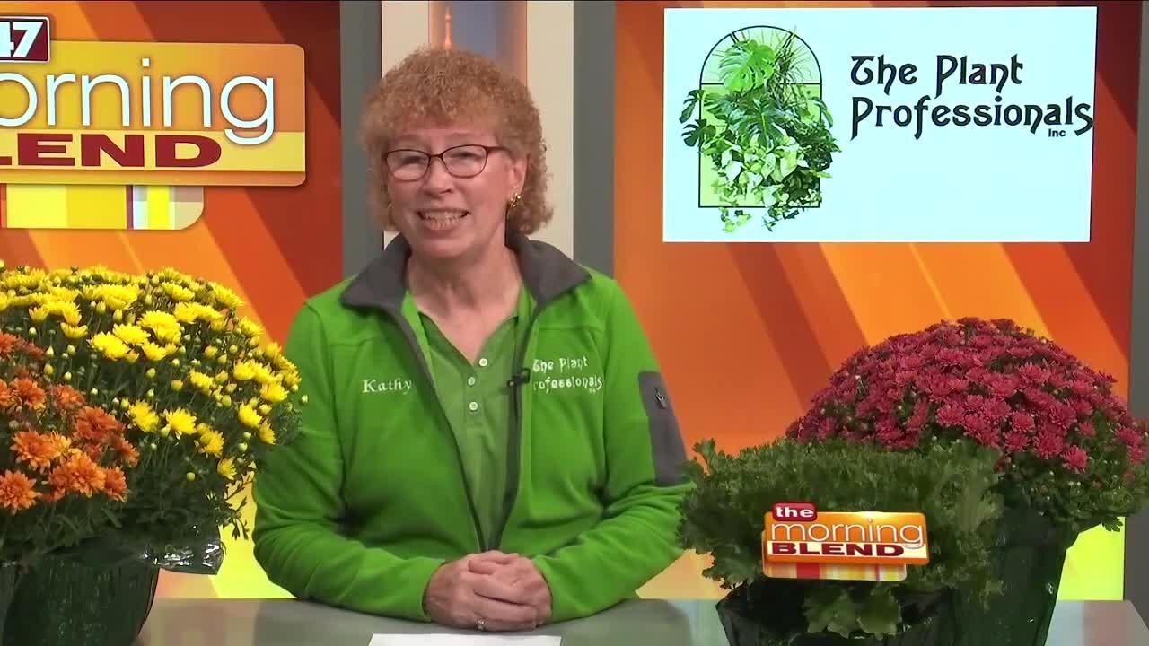 The Plant Professionals- 9/15/21