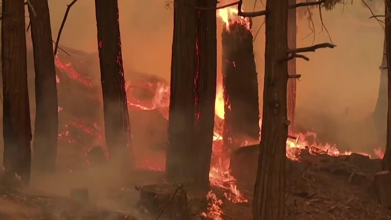 Why fire officials say it takes months to put out wildfires