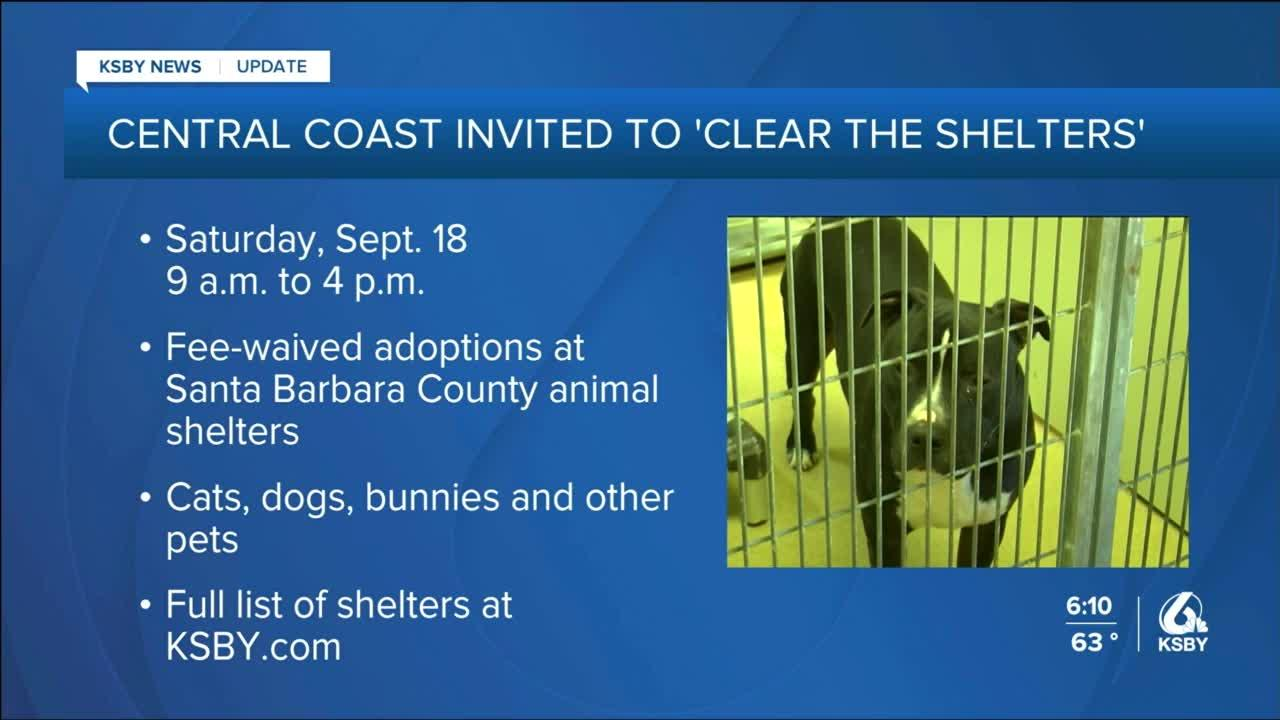 """Central Coast residents invited to """"Clear the Shelters"""""""