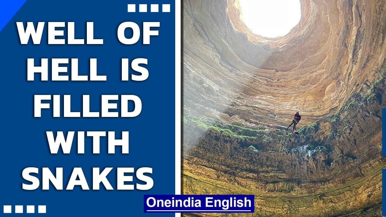 Yemen's Well of Hell is filled with snakes, reveals Omani cavers   Oneindia News
