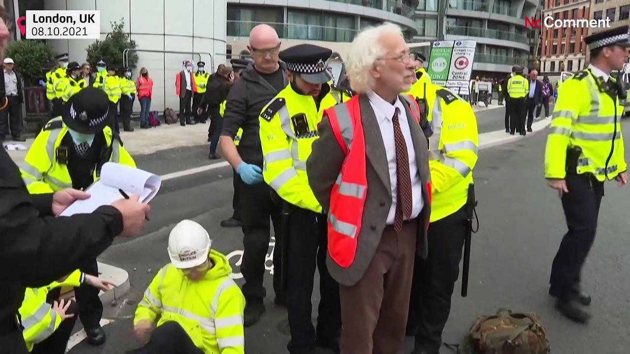 Climate activists block busy London roundabout