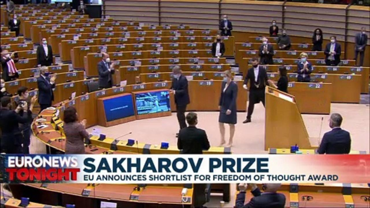 Sakharov Prize: Alexei Navalny & Jeanine Anez on EU shortlist for human rights award