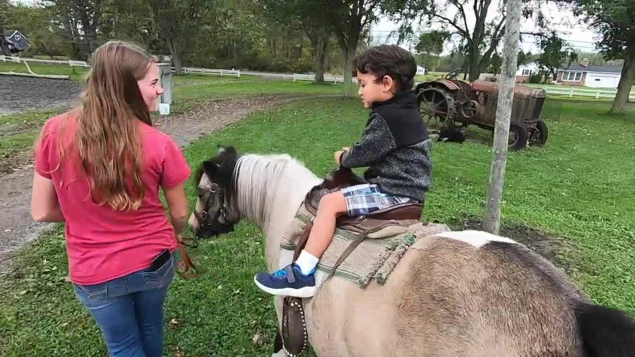 Kelkenberg Farm in Clarence Center is all about Fall family fun and education