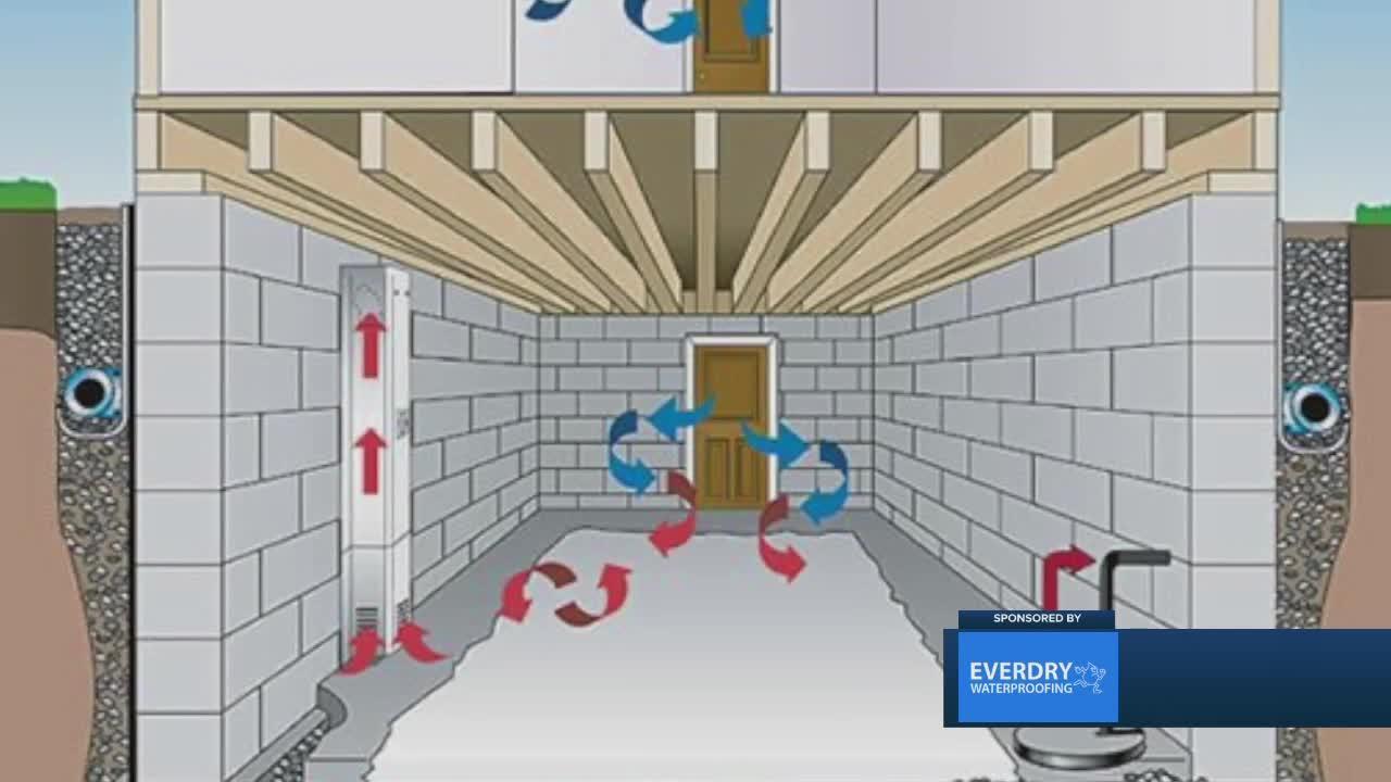 Everdry Waterproofing: How to waterproof your basement