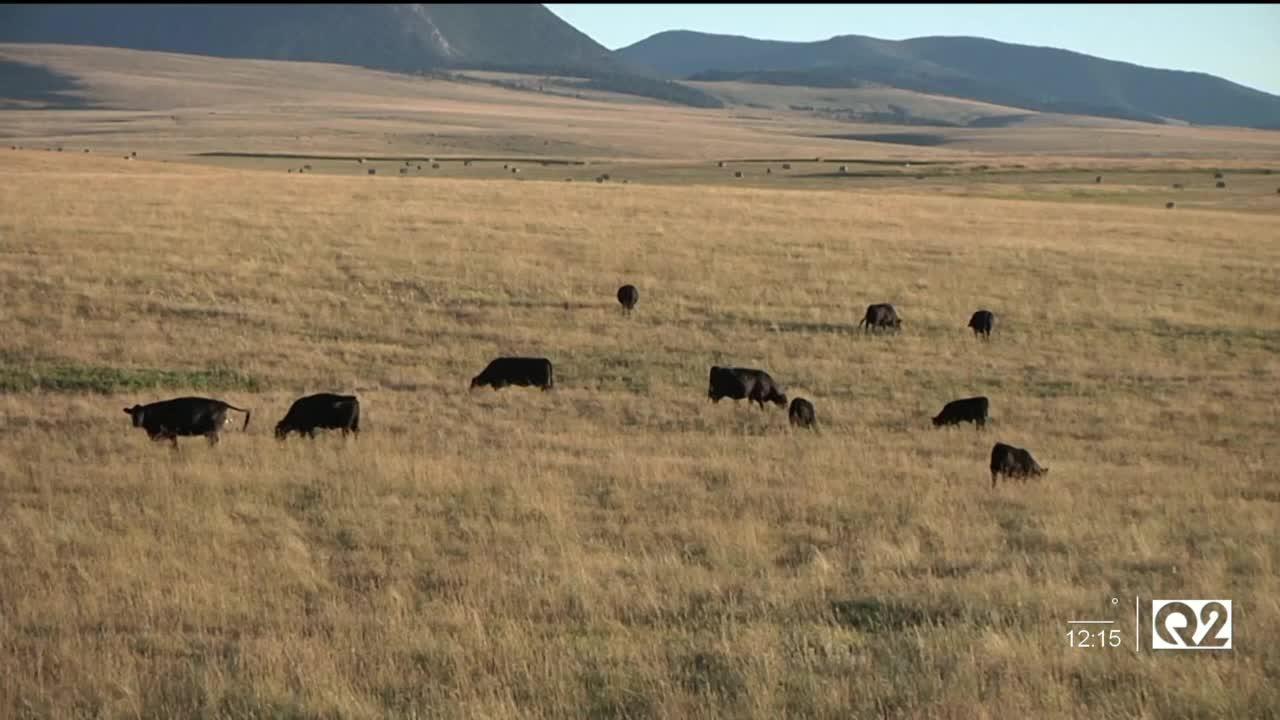 Montana Ag Report 10-14-21