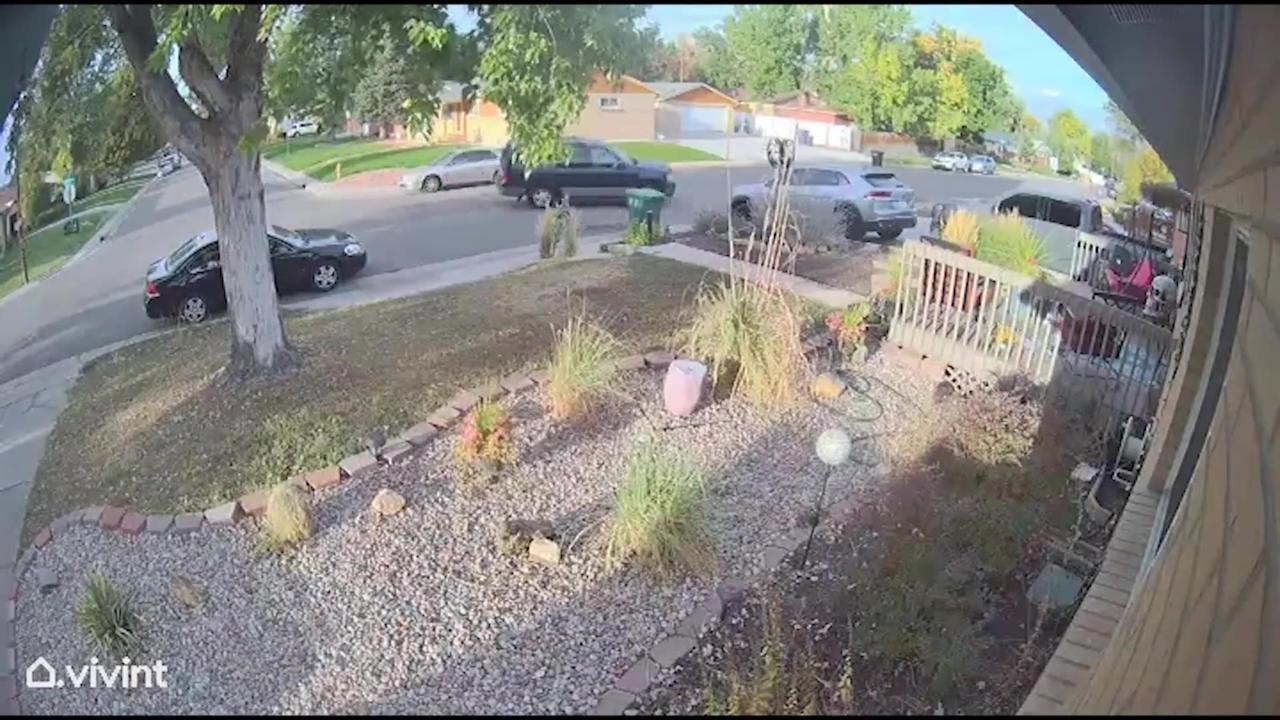Denver shootout captured on surveillance cameras in broad daylight