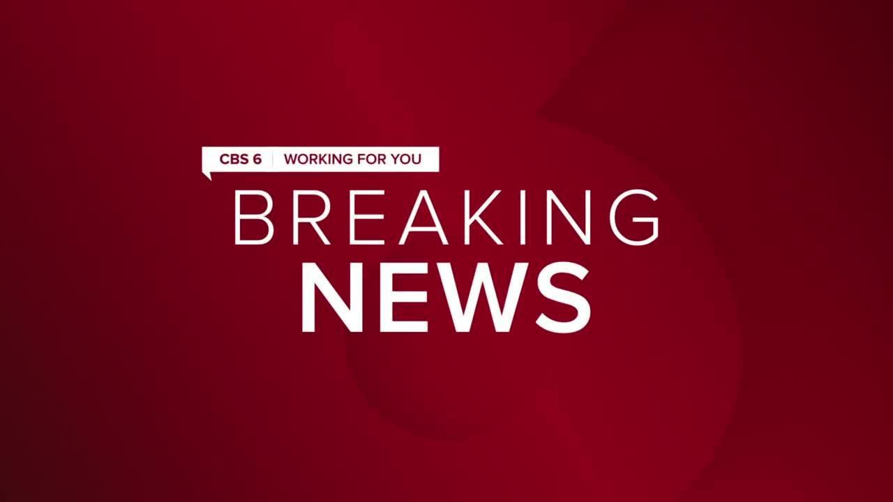 Horse dies after buggy crash on Virginia highway