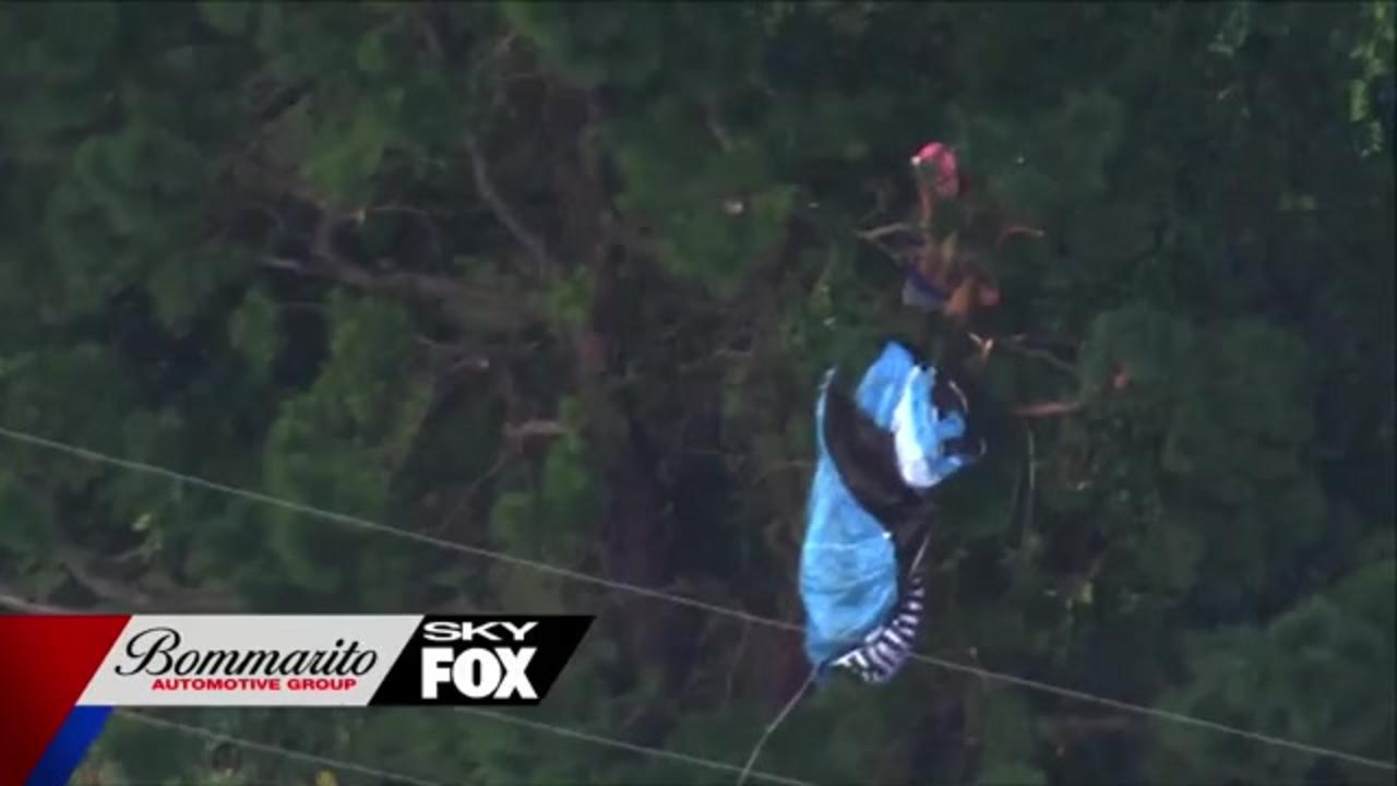 Florida woman base jumps from communications tower, gets stuck in tree