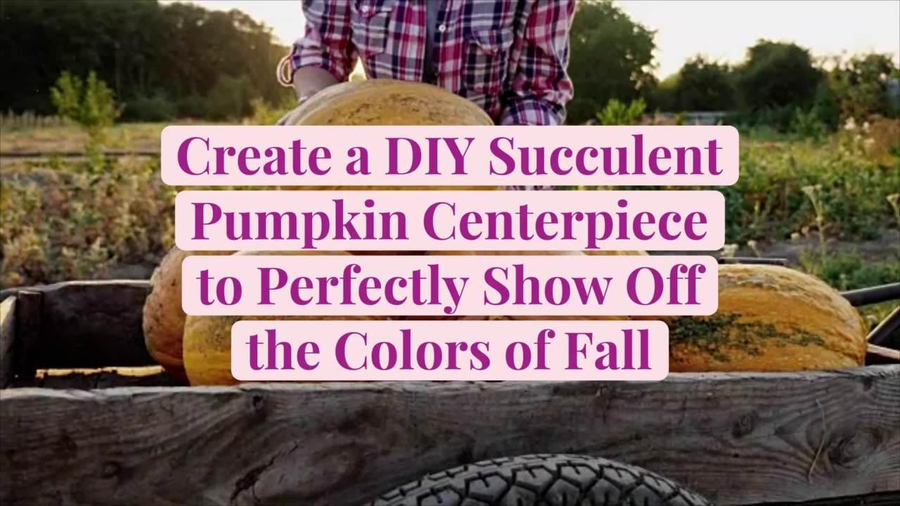 Create a DIY Succulent Pumpkin Centerpiece to Perfectly Show Off the Colors of Fall