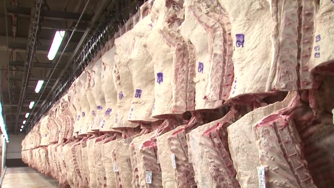 Cattle producers outline industry challenges to congressional committee