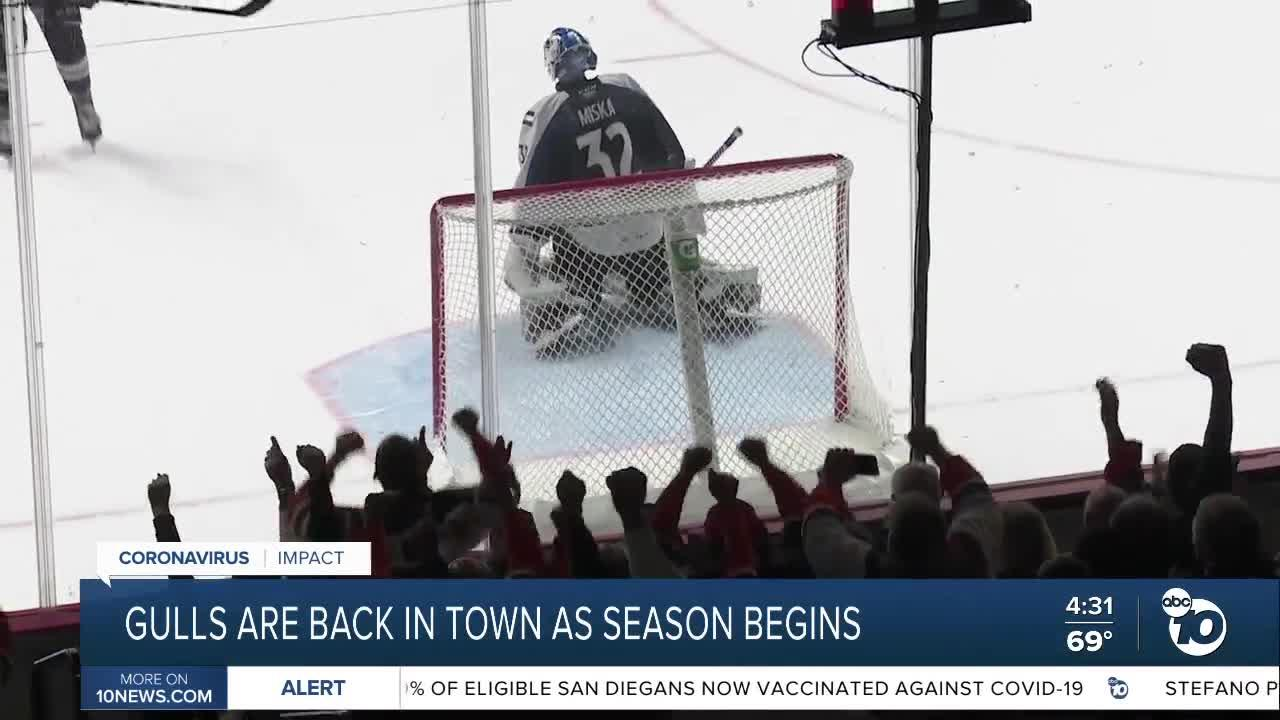 SD Gulls are back as season begins